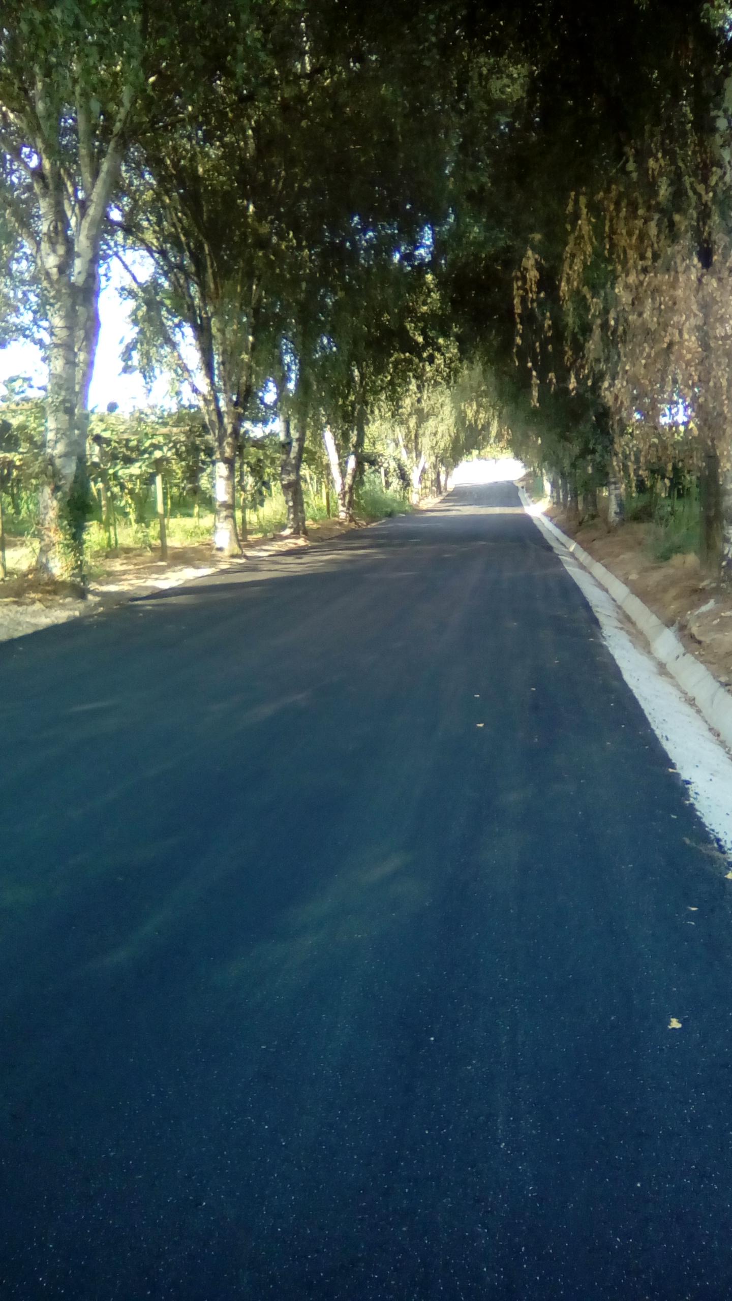 Beneficiação e pavimentação da Rua das Portas